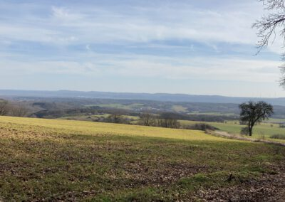 Aussicht Springerberg
